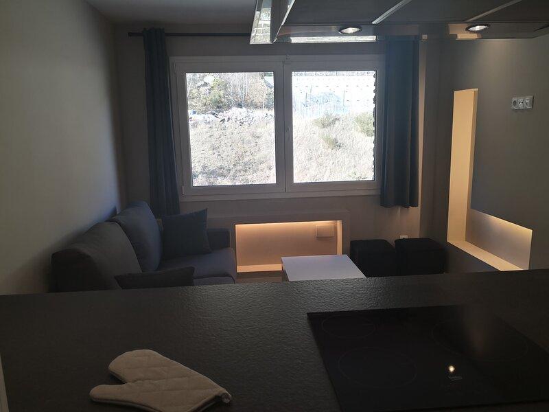 Amazing studio in El Tarter & Wifi, holiday rental in Ransol
