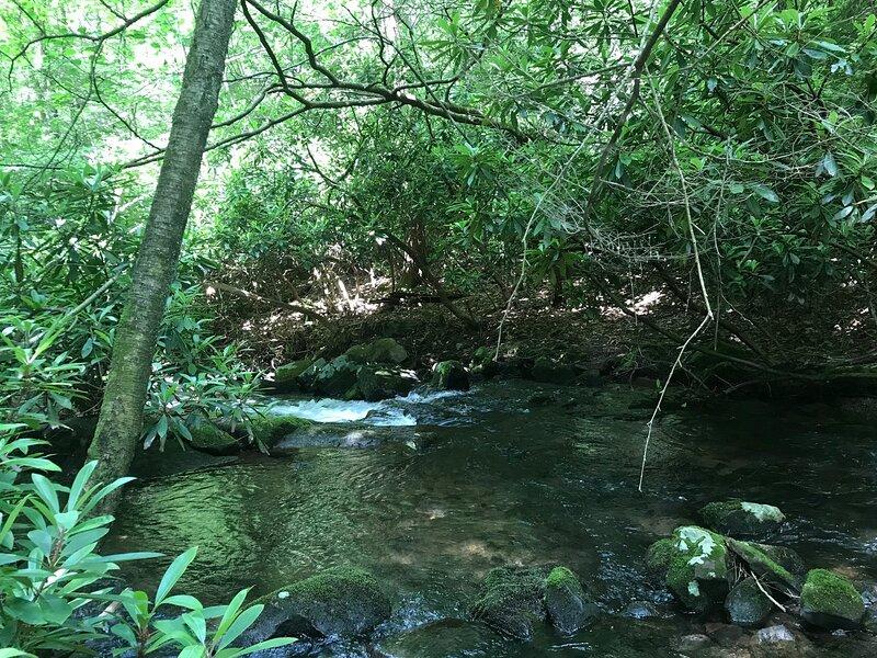 Tentrr Signature Site - Bear Creek Falls Getaway, location de vacances à Drums