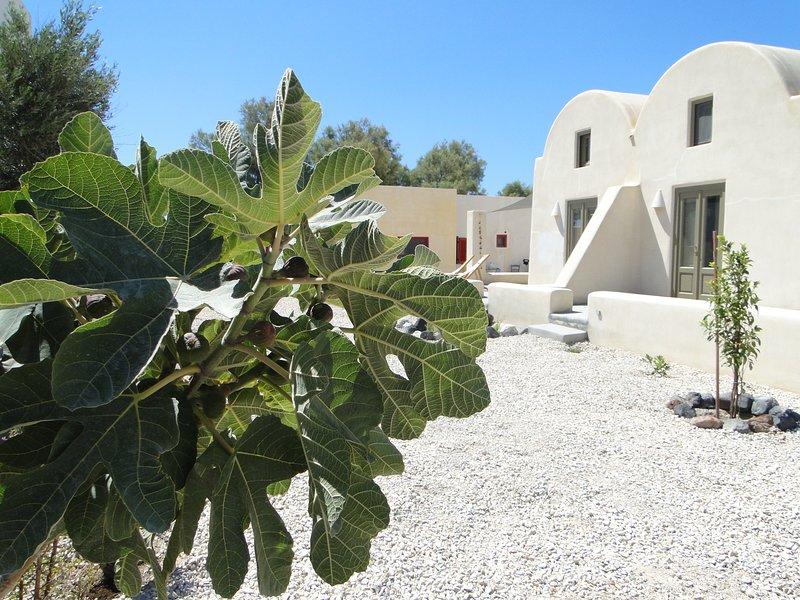Sunhaus, vacation rental in Perissa
