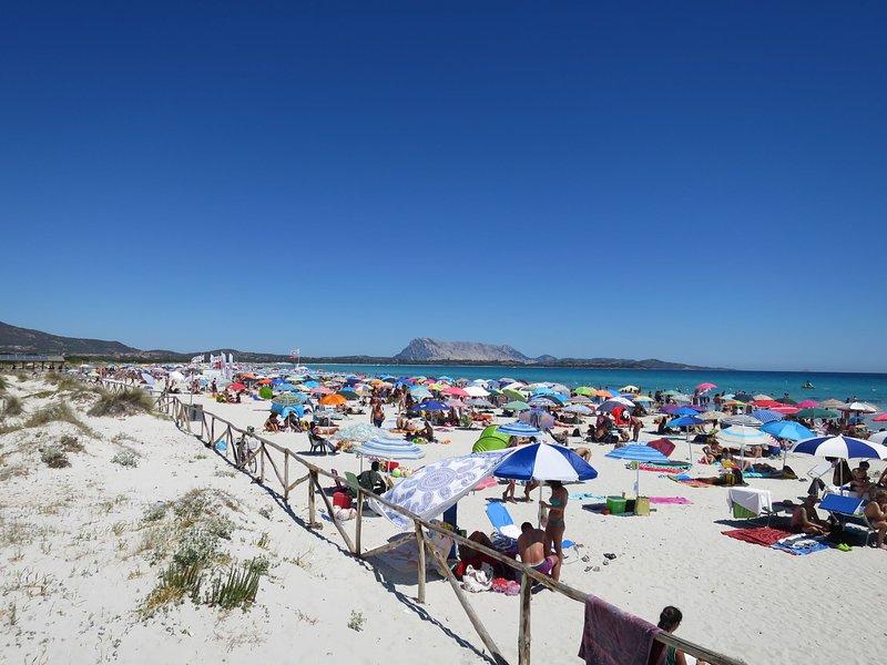 Le Canne (TEO113), vacation rental in Suaredda-Traversa