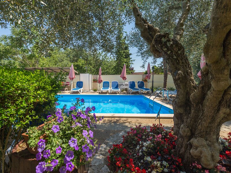 Amazing apartment in Poreč with WiFi, Swimming pool and Outdoor swimming pool, holiday rental in Zikovici