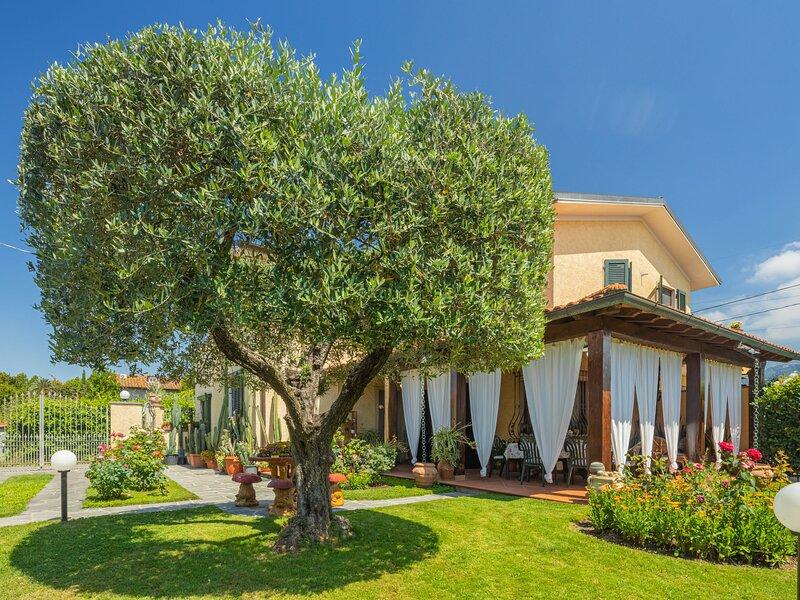 Renza, vacation rental in Pietrasanta