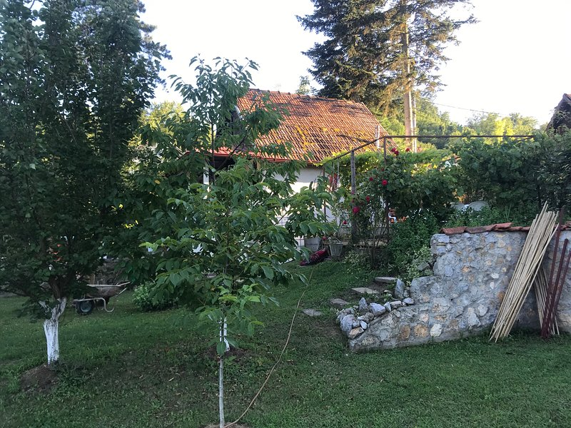 Small house, holiday rental in Cacak