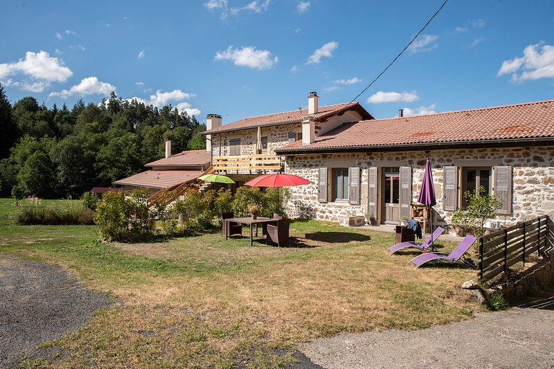 Gite des graines -- Rust, Ruimte en Ontspannen, holiday rental in Saint-Julien-d'Ance
