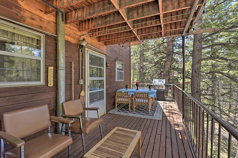 NEW! Charming Cabin w/Mtn Views: Hike, Bike, & Ski, holiday rental in La Veta