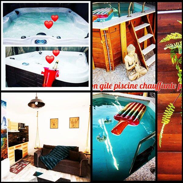 STUDIO deco chalet spa privatif à  1h30 de Paris., casa vacanza a Amilly