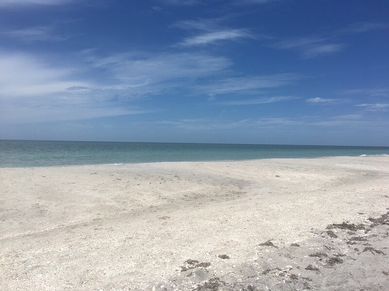Gulf Front Condo GORGEOUS PANORAMIC OCEAN VIEWS updated decor GROUND LEVEL UNIT, holiday rental in Manasota Key