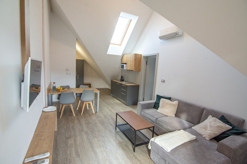Living room with kitchenette and dining area in loft