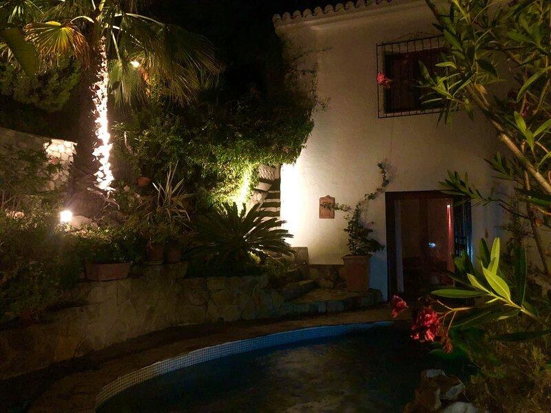 Garden at night.