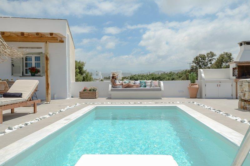 Naxos Finest Villa with private pool and jacuzzi, location de vacances à Naxos (ville)