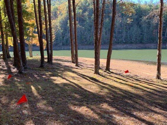 Tentrr Signature Site - Water's Edge Campsite on Sunset Cove, alquiler vacacional en Austinville