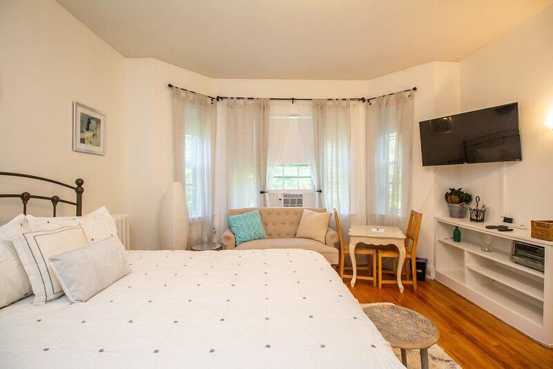 Fully Furnished Spacious Coolidge Corner Studio, holiday rental in Boston