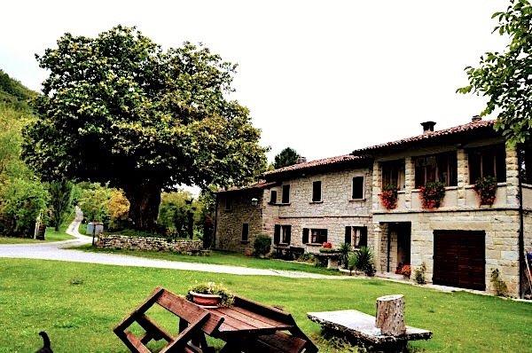 'Angolo di Paradiso' B&B Oasi di relax e benessere, holiday rental in Zocca