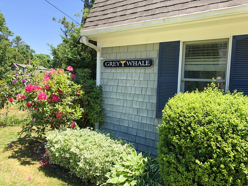 Expansive Cape Get Away - The Grey Whale Awaits!, location de vacances à Cotuit