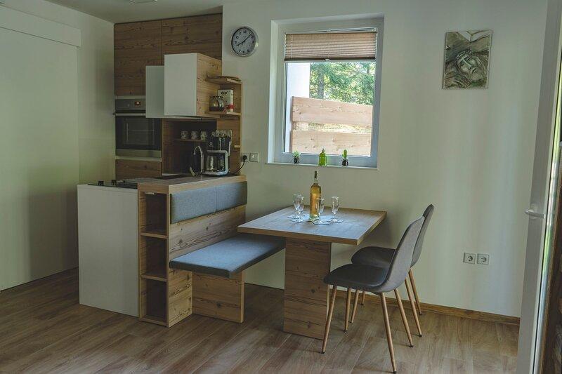 Apartment Kristy, holiday rental in Srednji Vrh