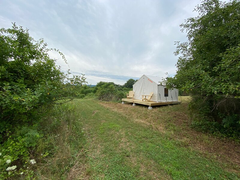 Tentrr Signature Site - Orchard Tent Esopus, alquiler vacacional en Samsonville