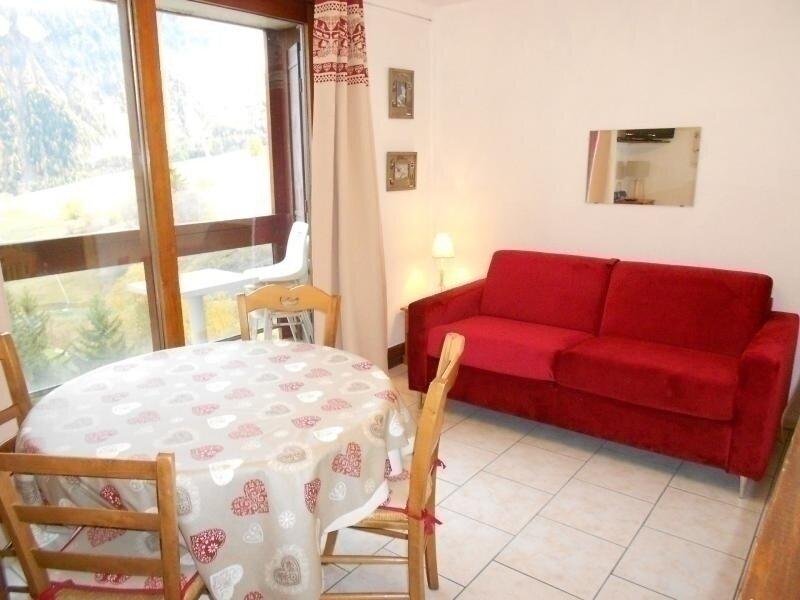 BEAU STUDIO DE 24 M² AVEC VUE SUR LES PISTES, holiday rental in Le Corbier