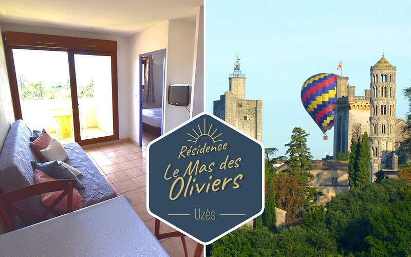 Résidence Le Mas des Oliviers, holiday rental in Arpaillargues