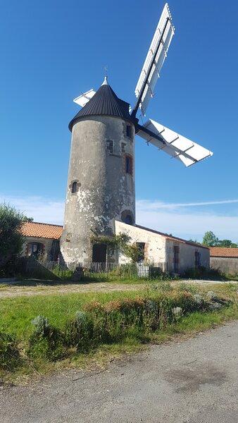Le Moulin de Rairé du côté de Sallertaine