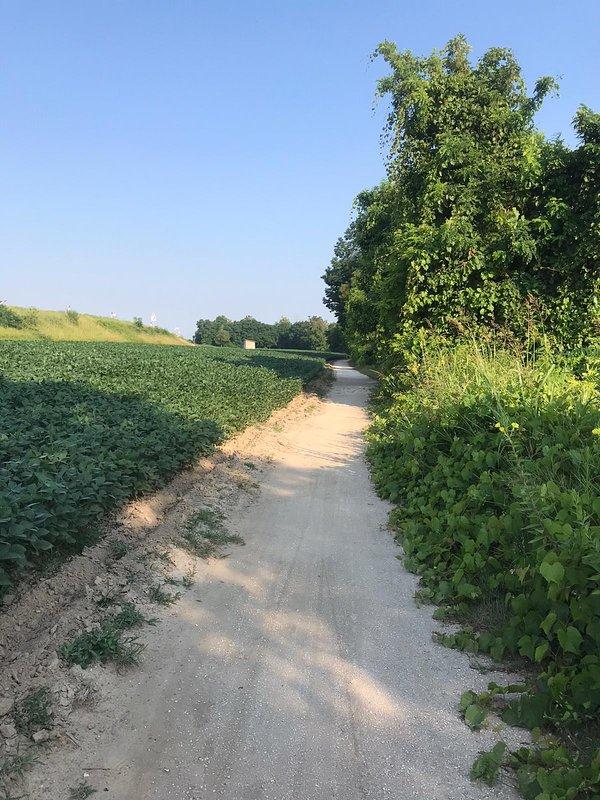 Vista della pista ciclabile / a view of the cycling route