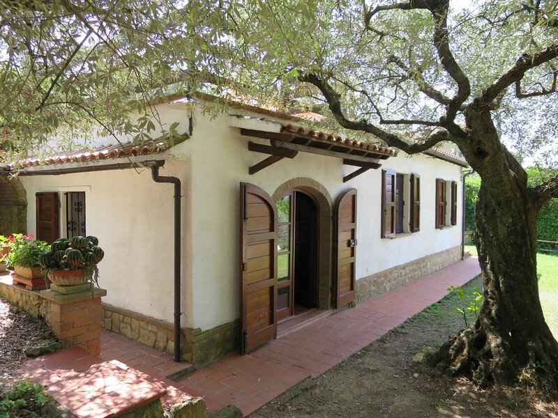 Ulivo (MSC255), holiday rental in Montescudaio