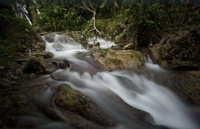 Heaven's Door! 100% Private Property, 2 Acres Tropical Rainforest, Stream & Pond, alquiler de vacaciones en Pepeekeo