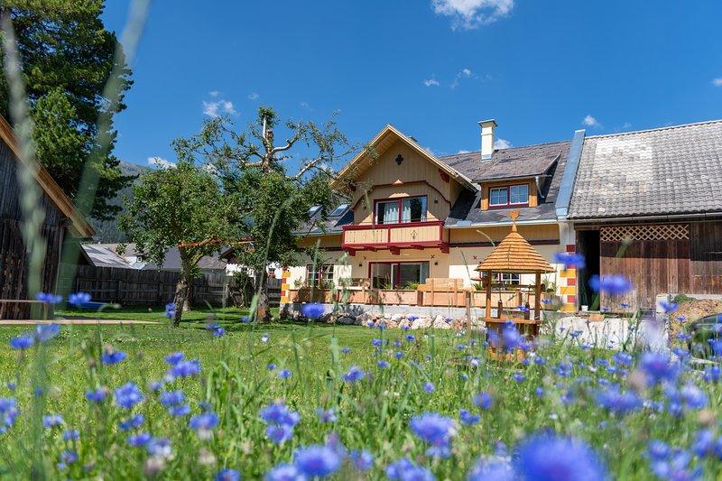 Heimathaus Dengg - Top 1 Wohnung Zaunkönig mit 2 Schlafzimmer, Wohnküche, Bad, holiday rental in Lessach