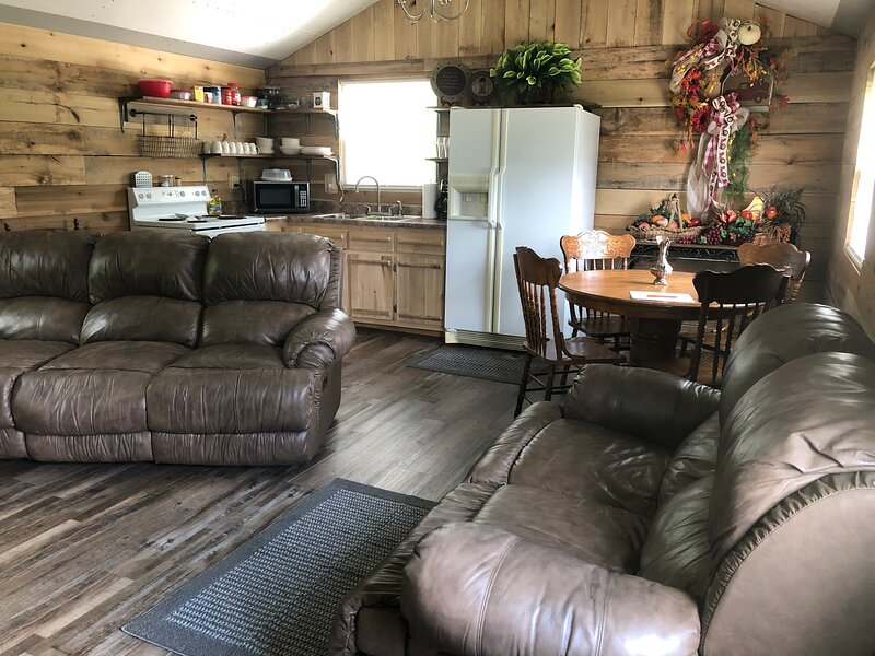 City Gone Country Cabin, holiday rental in Fall Rock