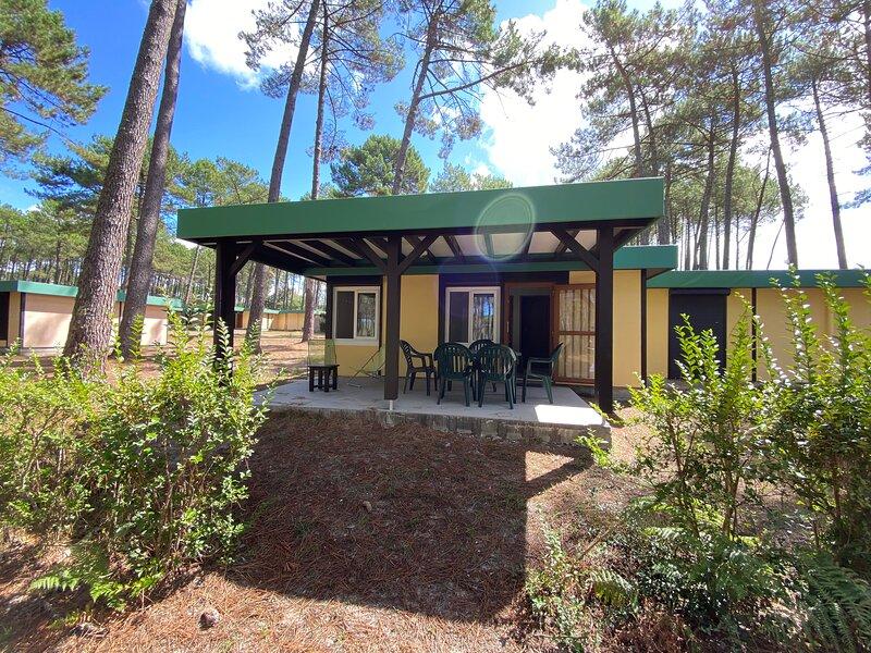 Les Cottages de Léon - Villages sous les pins 'Les Erables', vacation rental in Leon