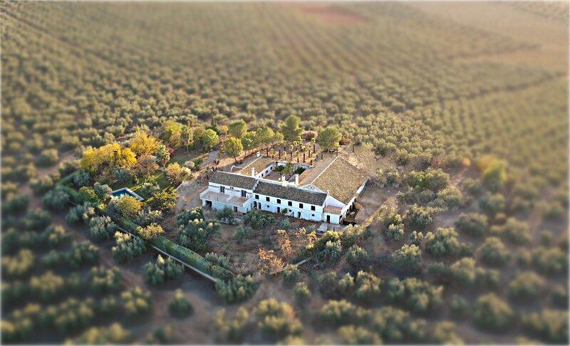 Hacienda Molino Blanco, holiday rental in La Rambla