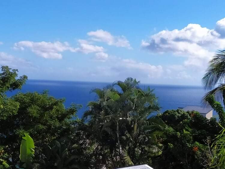 Nice studio with sea view & terrace, casa vacanza a La Possession