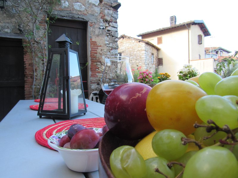 An indipendent and traditional tuscan house with view,garden and court ., holiday rental in Orbicciano