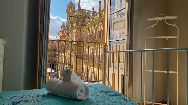 Apartamento con vistas a la Plaza Mayor de Salamanca, alquiler vacacional en Gallegos de San Vicente