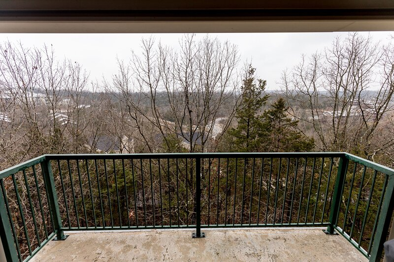 Penthouse mountain view clean and comfy condo!, holiday rental in Kirbyville