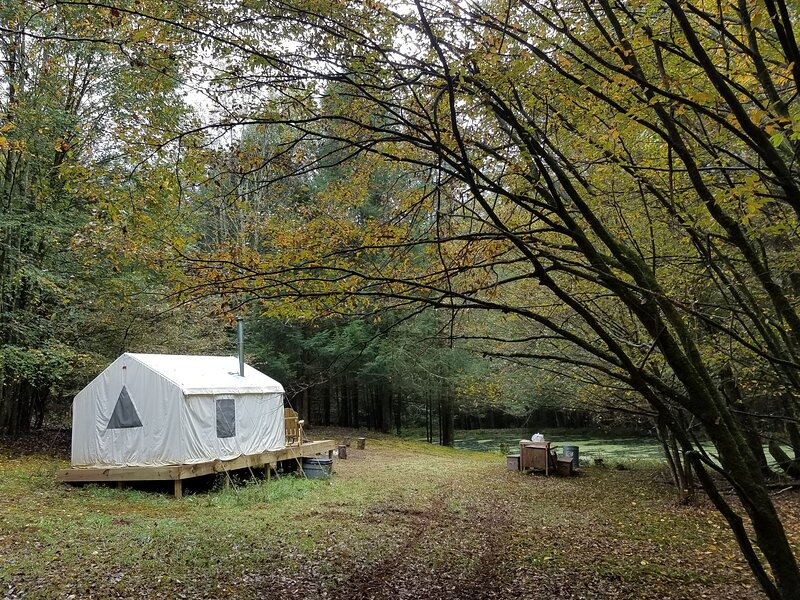 Tentrr Signature Site - Catskill Mountainside Camp, vacation rental in Cochecton