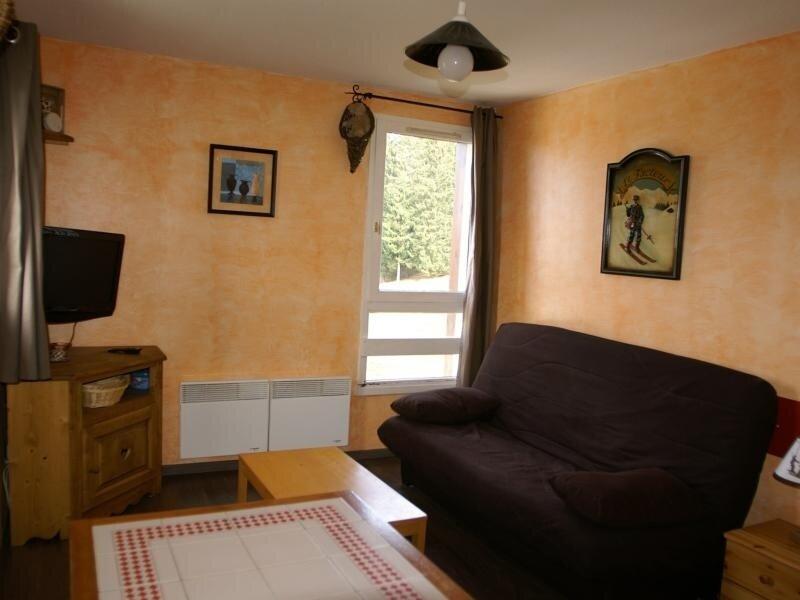 Studio cabine au pied des pistes résidence Perce-Neige, holiday rental in Prapoutel