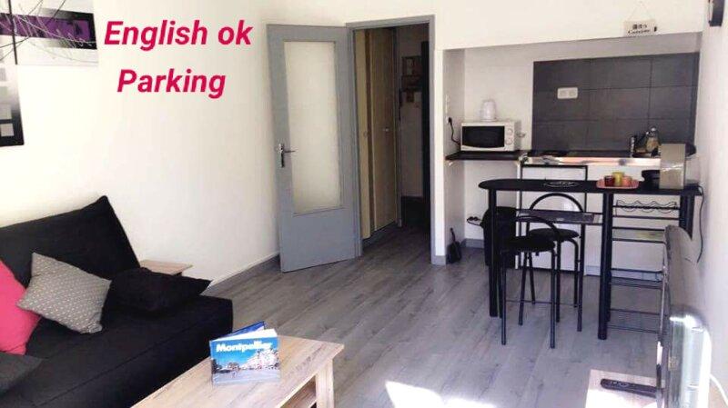 * Le Mermoz, Studio meublé proche ville, parking, WIFI *, holiday rental in Castelnau-le-Lez