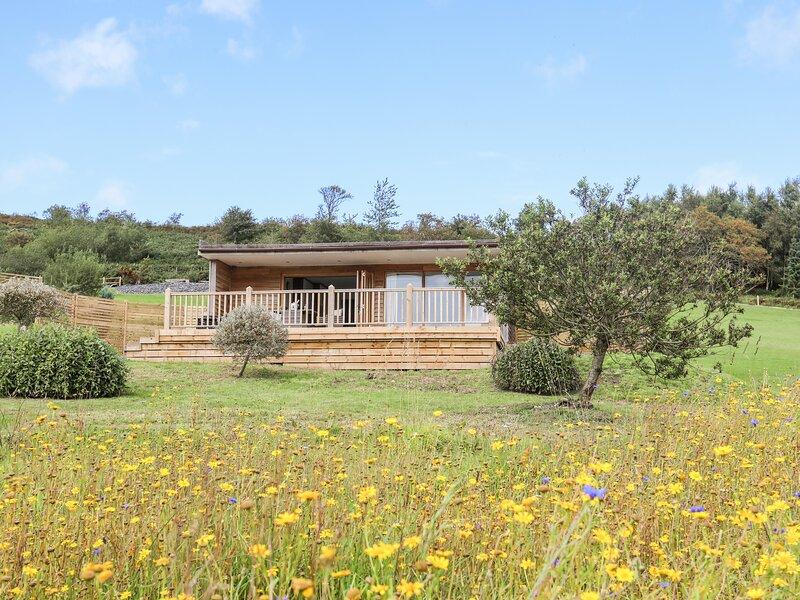 Meadow Lodge, Corwen, holiday rental in Maerdy
