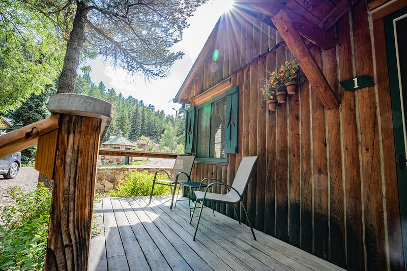 Colorado Bear Creek Cabin 1, vacation rental in Evergreen