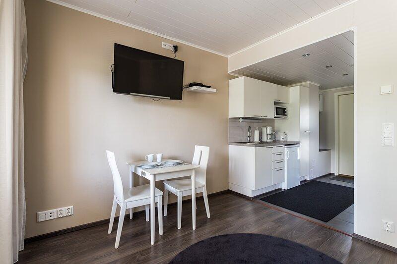 Studio apartment Topelius, vacation rental in Punkaharju