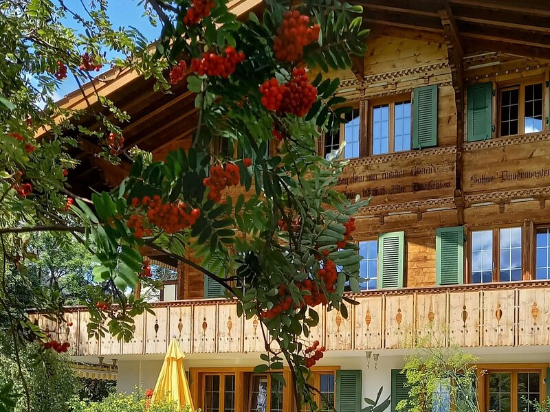 Am Brüggli # 2, vacation rental in Lenk im Simmental