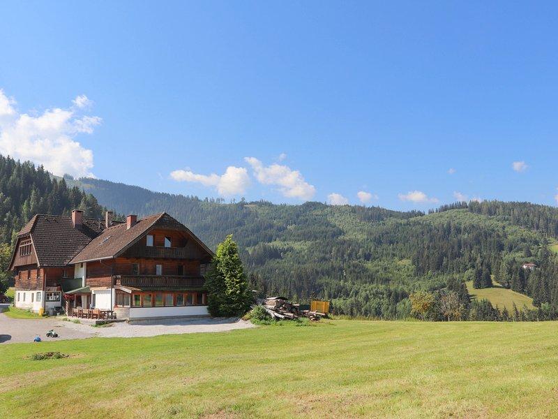 Dachstein, holiday rental in Weissenbach