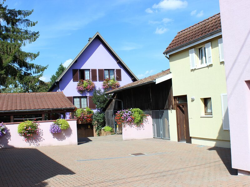 Résidence jaune et rose, holiday rental in Artzenheim