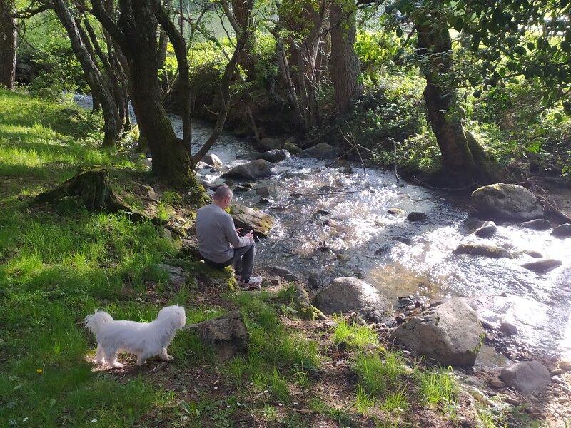 el río de la Venta, al lado de casa. su rumor se escucha todo el año desde el jardín