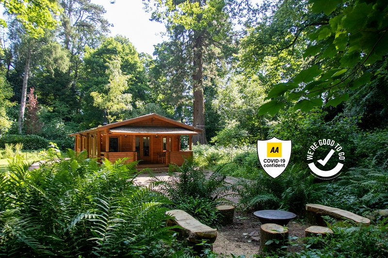The Old Quarry Somerset - Log Cabin in Private Woodland, holiday rental in Runnington
