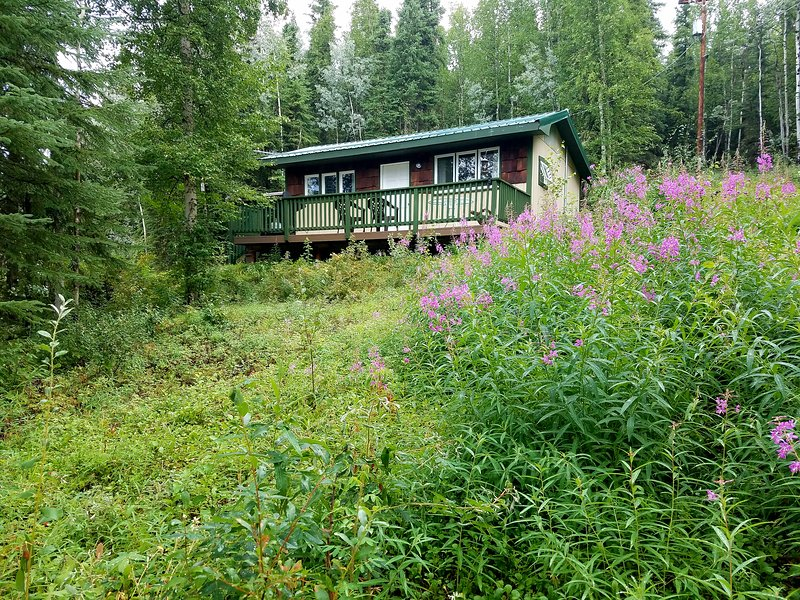 Northwoods Cottage -Peaceful cabin to view Aurora, holiday rental in Fairbanks