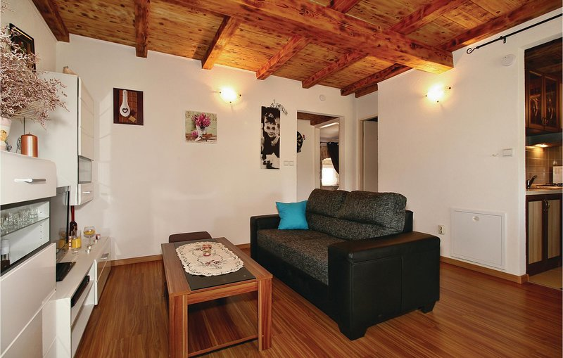 Awesome apartment in Porec with WiFi and 2 Bedrooms (CIE670), holiday rental in Veleniki