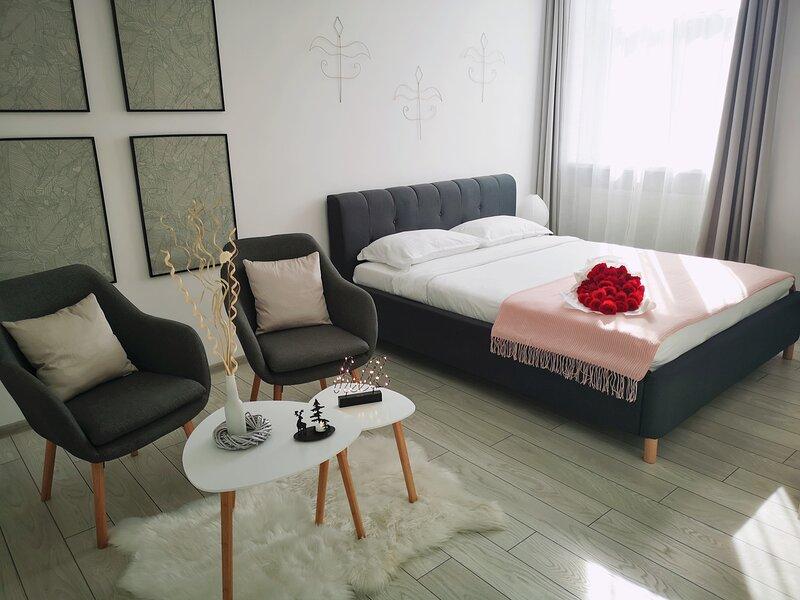 Albert Hotel Apartment, location de vacances à Nord-est de la Roumanie