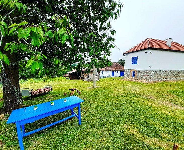Domacinstvo Pajovic, holiday rental in Cacak