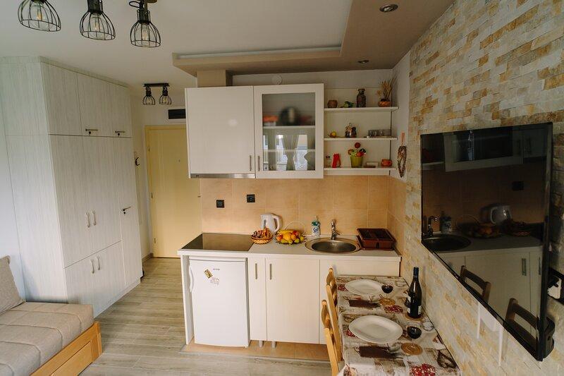 Apartment Ristic - Vrnjacka Banja, holiday rental in Central Serbia